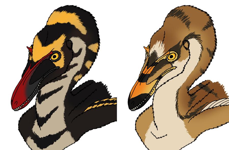Dromaeosaur color practice