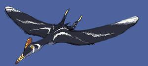 First Pterosaur