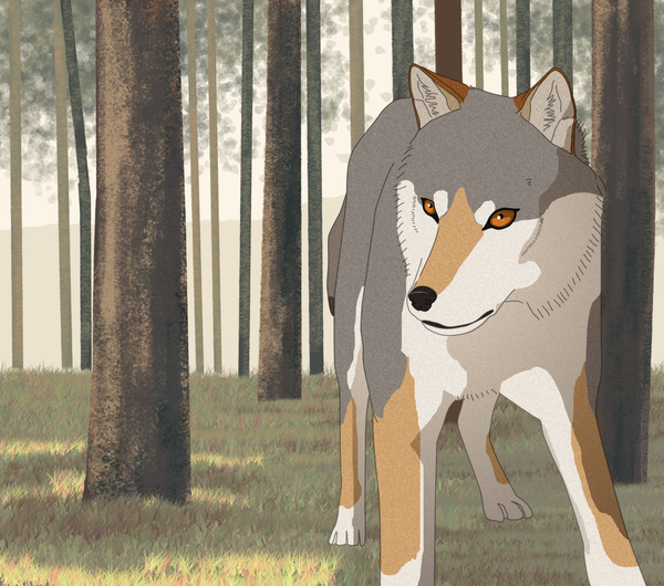 Wolfpen by koru1243