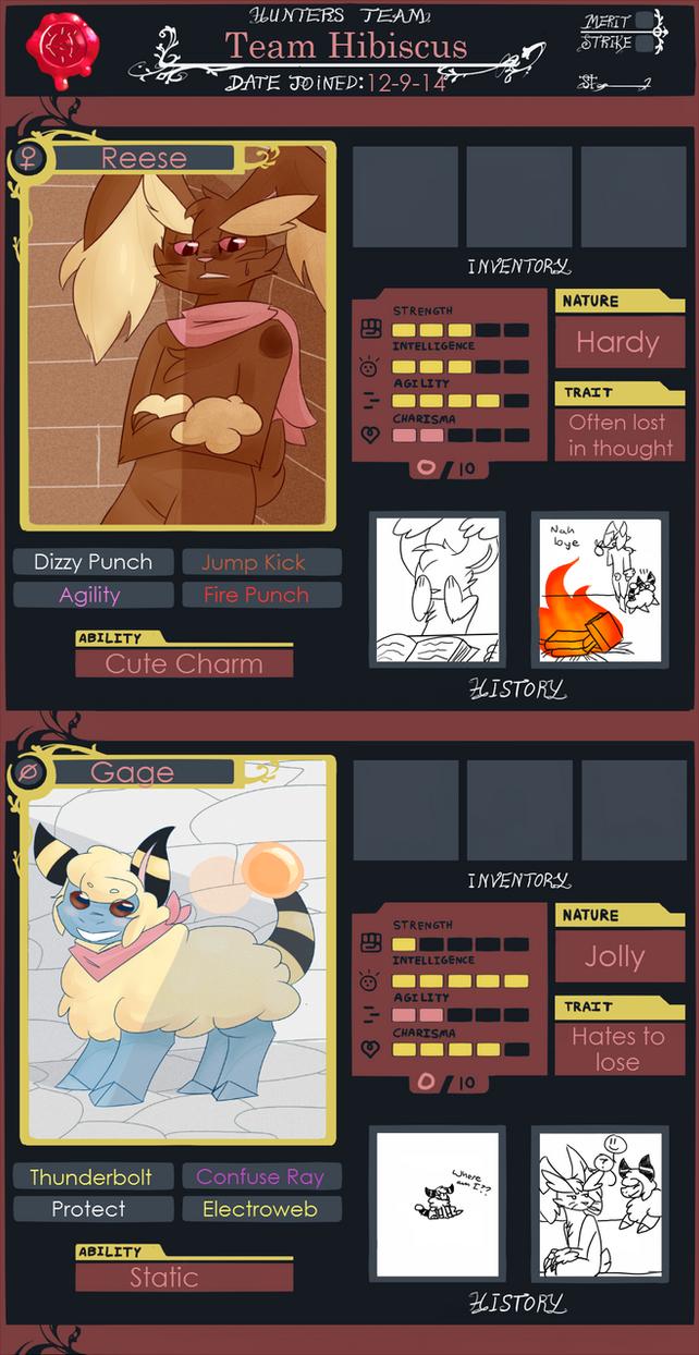 PMDU - Team Hibiscus by hotpinkdragon