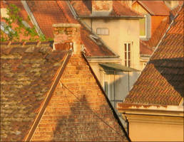 dreamy roofs