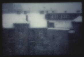 hazy memory backyard_e