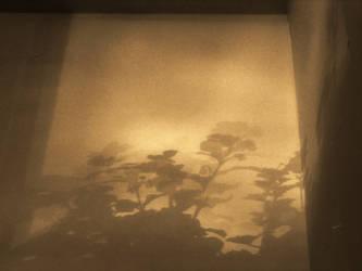 cm_152 daily shadefloral dancing-wall by drnda42