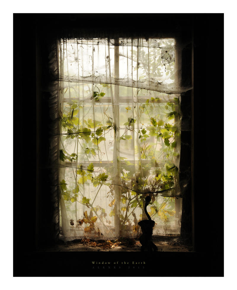 Window of the Earth by alex-xs