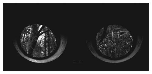 Dark Nature by alex-xs
