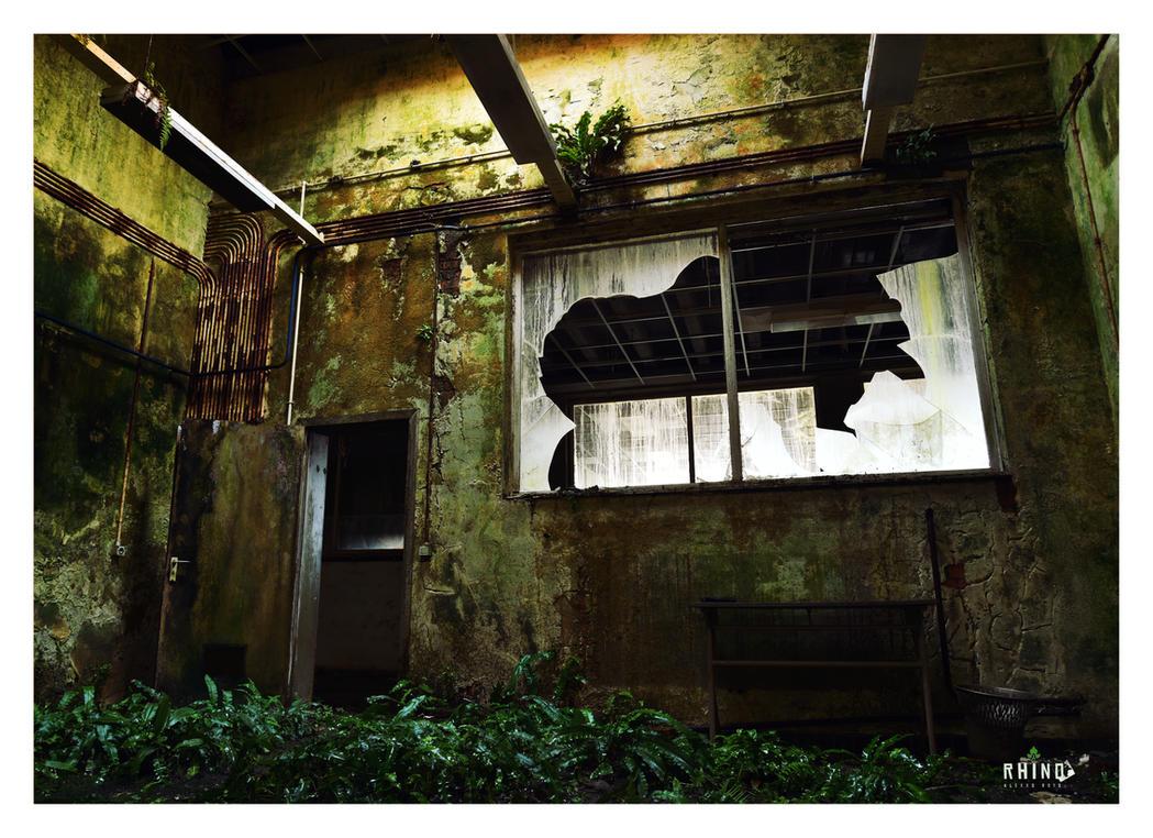 Rhino by alex-xs