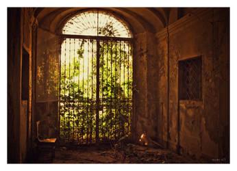 Door of paradise by alex-xs