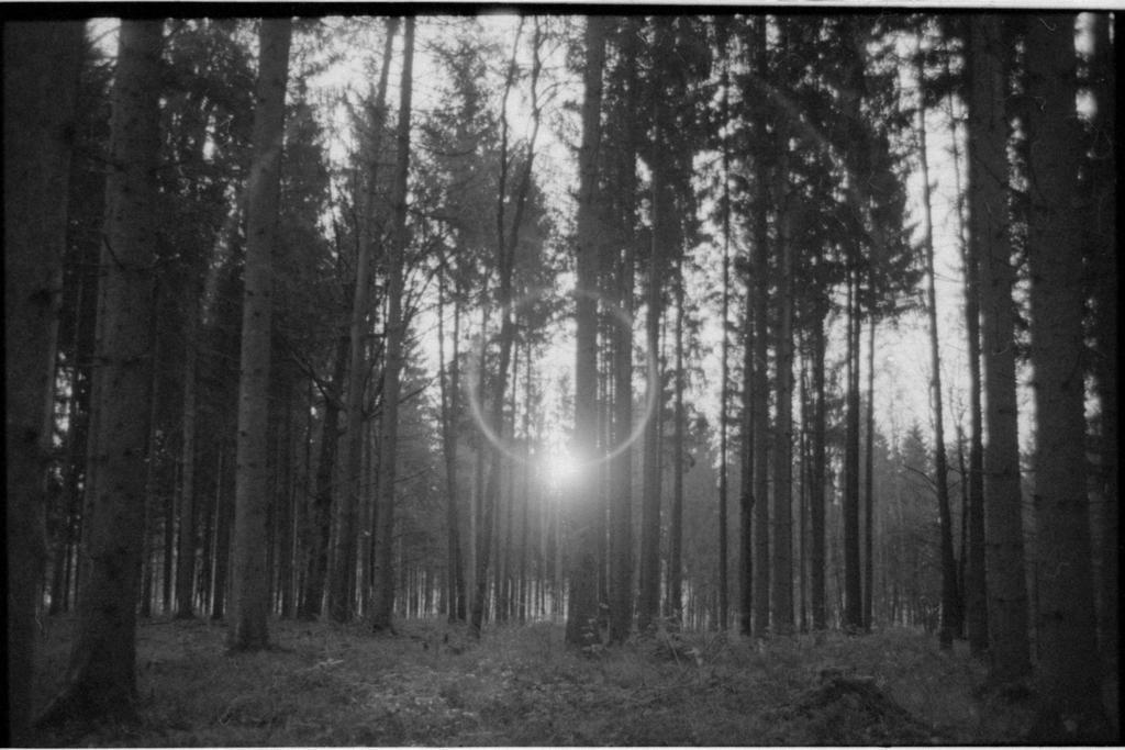 lens flare by mynamehasbeenstolen