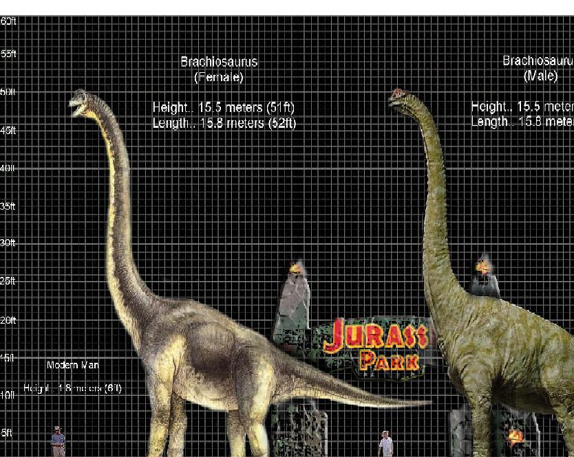 Jurassic Park Dinosaur Size Chart | www.pixshark.com ...