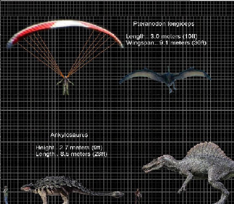 Jurassic Park Dinosaur Size Chart images