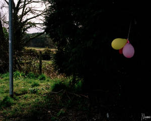 Cornwall Documentary 7