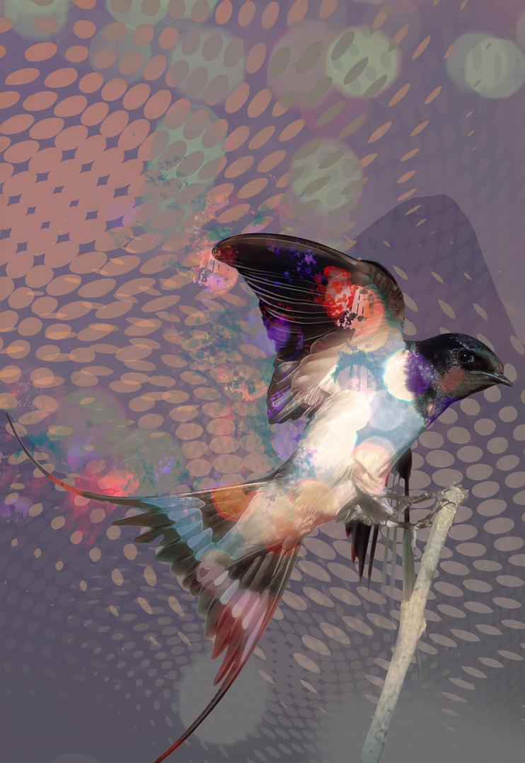 Flutter by WorldMadness