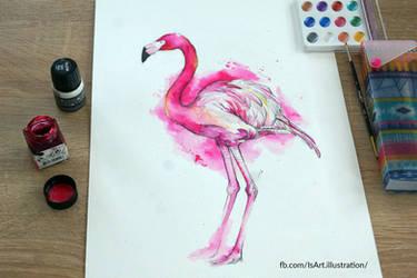 Flamingo by Vegeta3690