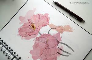 Pink flowers by Vegeta3690