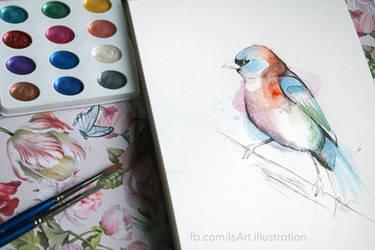 Little bird watercolour by Vegeta3690