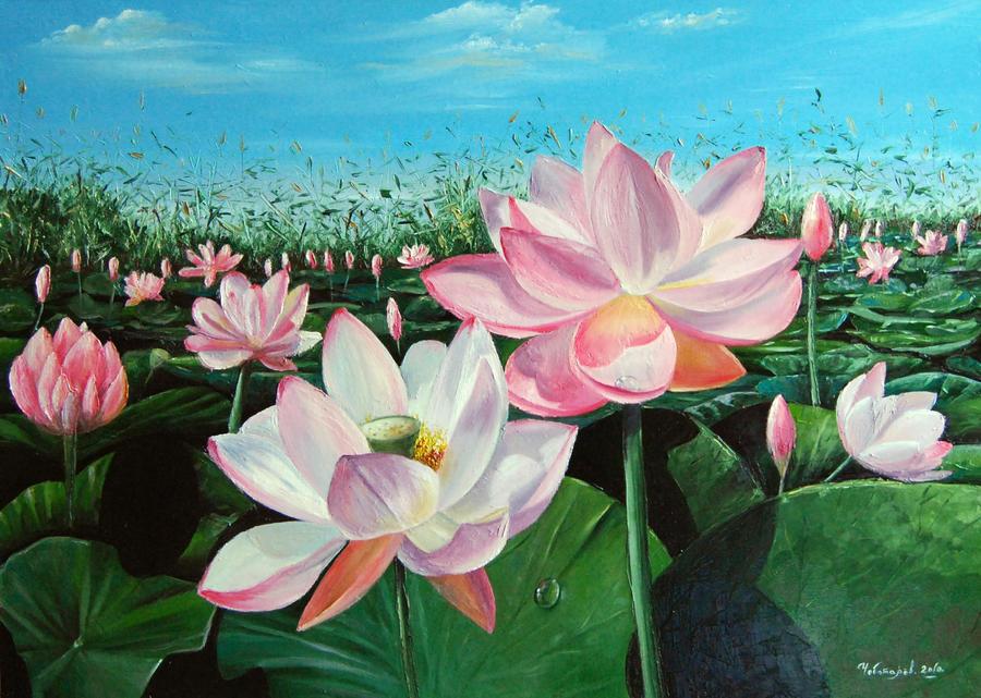 lotus field ゲイ 体験談