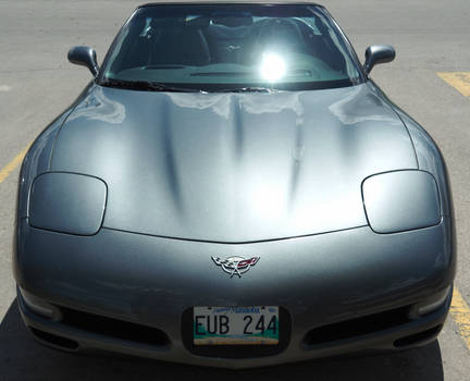 Anniversary Corvette With Patina