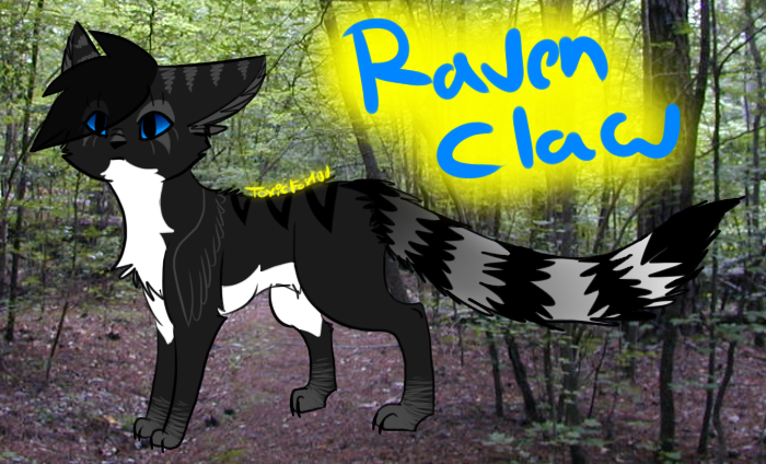 Warrior Cat Rp Terms