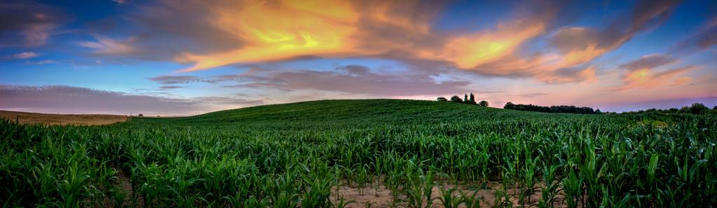 Little Corn Hill by ZielinskiMaciej