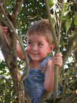 Boy in Tree 4