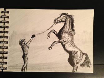 Horse-Sketch by mirceabotez