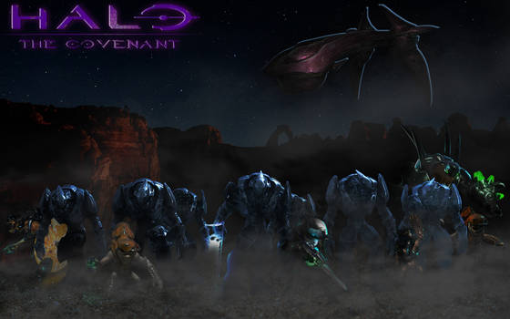 Halo|The Covenant (wallpaper)