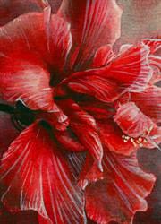 Hibiscus flower ATC