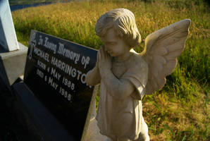Weeping Angel by wafitz