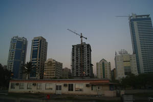 The Cranes in Bahrain by wafitz