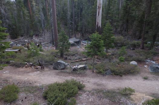 384 - Lake Tahoe