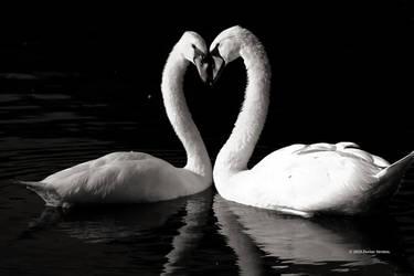 A Bond Of Love by DorianStretton