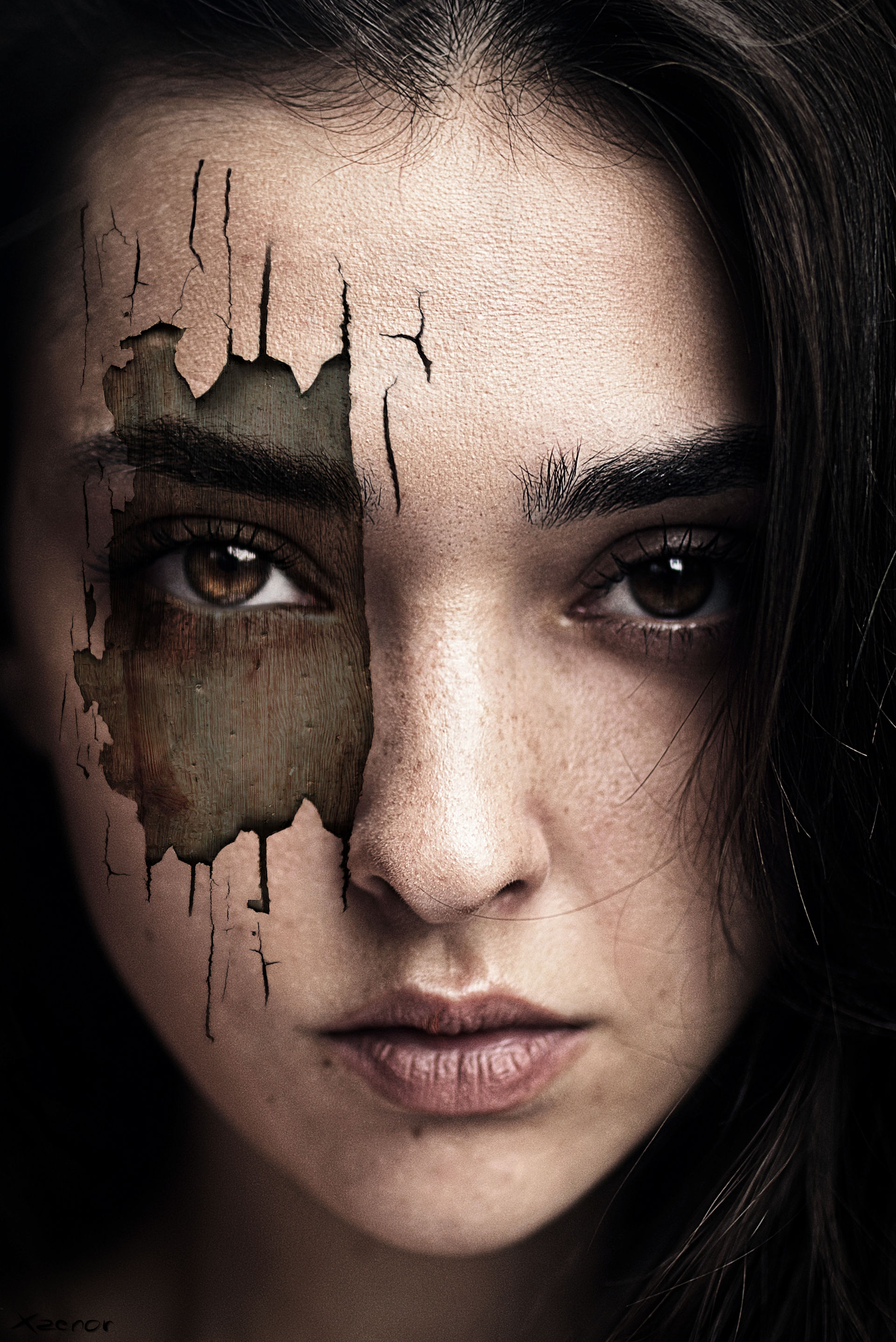 The Girl with the Wooden Face