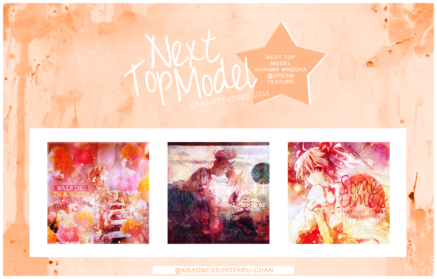 DT|Next Top Model 2014 by Hotaru-chan-8959