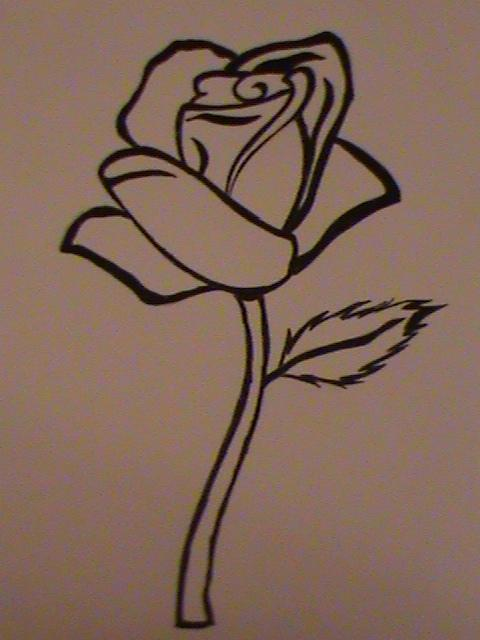 Line Drawing Of A Rose : Line drawing rose by animegamer on deviantart