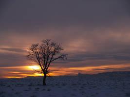 The Last Sunset by DustwaveStock