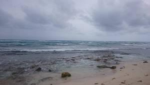 Mexico beach stock 6