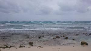 Mexico beach stock 7