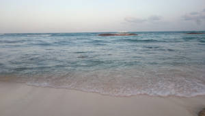 Mexico beach stock 14