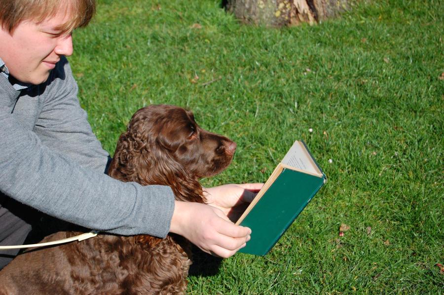 Reading Dog by Faceler
