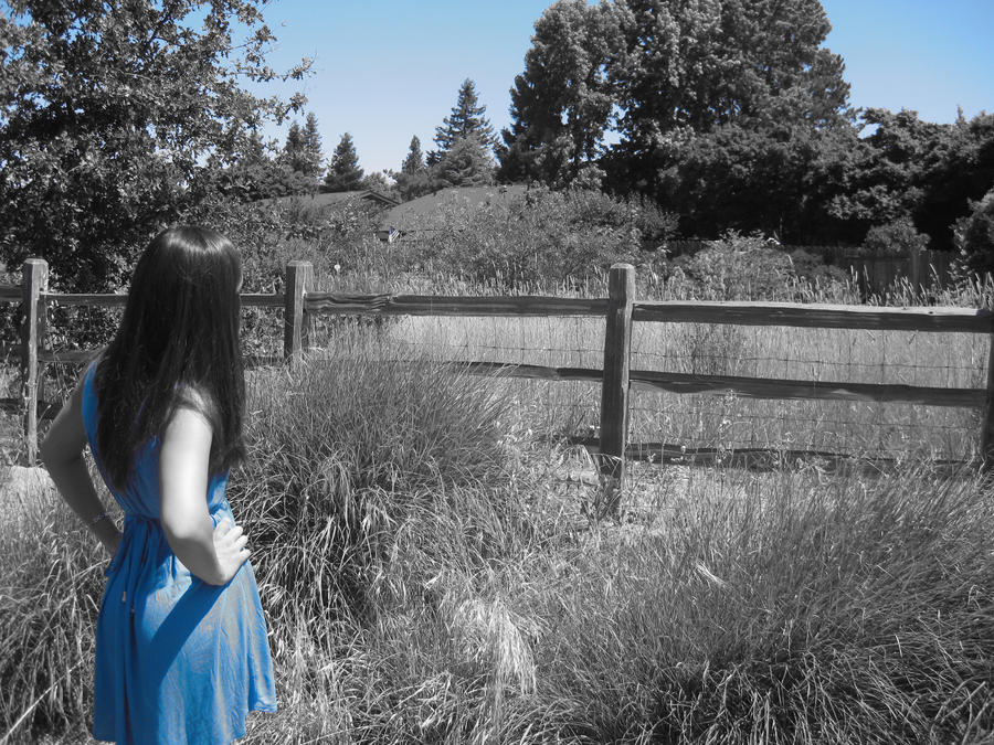 Razbijemo monotoniju bojom - Page 5 Blue_dress_by_cmgabby-d4d6udx