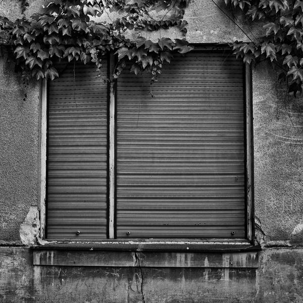 window1 by SorrowScavenger