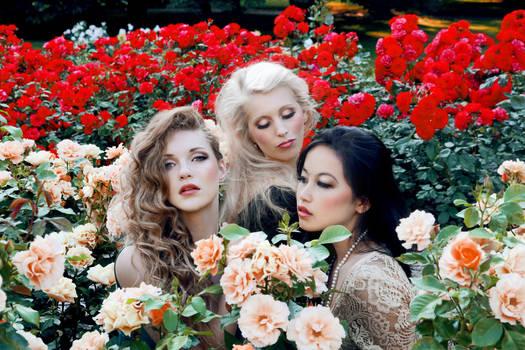 The Three Promised princesses