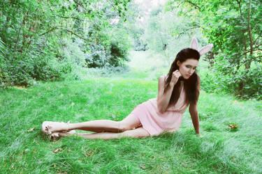 The Rabbit Princess by xxxamylindaxxx