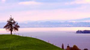 Constance Lake View by kickmeto