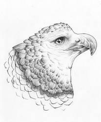 Tattoo |Harpia by Askaraya