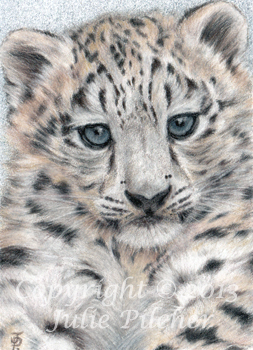 ACEO Snow Baby Leopard Cub Miniature By JuliesArtwork