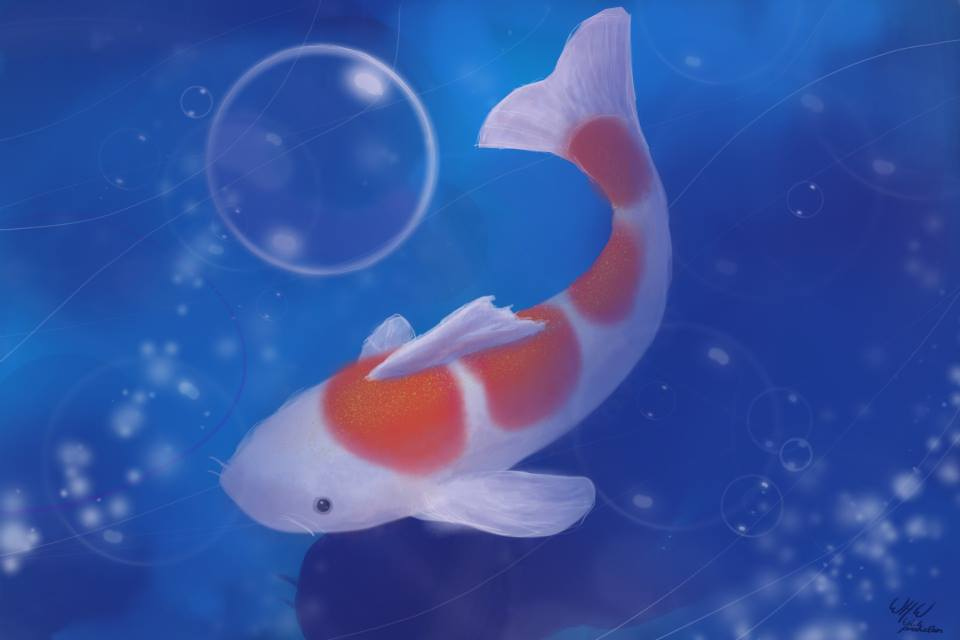 fishieee by 19944991