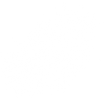Angel Feathers PNG (Overlay) 12