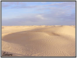 Sahara by halvertoh