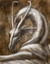 gesture of a dragon by hibbary